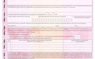 Стоимость зеленой карты (green card) в белоруссию в 2020 году — купить онлайн, для чего нужна, штраф