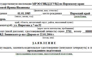 Заявление о выдаче водительского удостоверения (прав) в 2020 — образец заполнения, взамен утерянного, после лишения, госуслуги