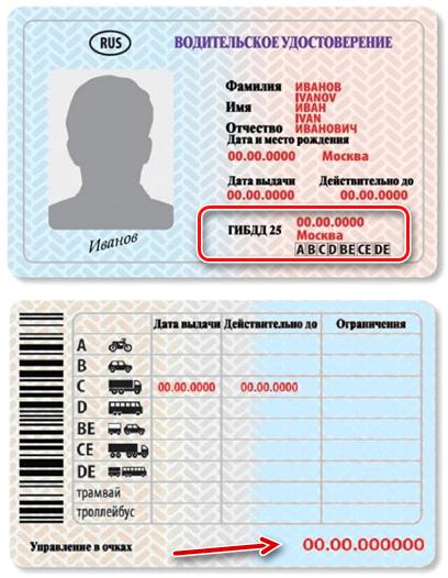 Узнать номер водительского удостоверения (прав) по паспорту в 2020 - онлайн, по фамилии