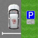 Проверить штрафы за парковку ЦОДД в 2020 году - по номеру машины, по номеру постановления, обжалование