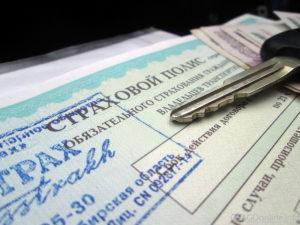 Как вписать водителя в электронный полис ОСАГО в 2020 - можно ли, сколько стоит, штраф