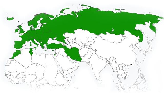Зеленая карта (green card) в Латвию в 2020 году - стоимость, купить